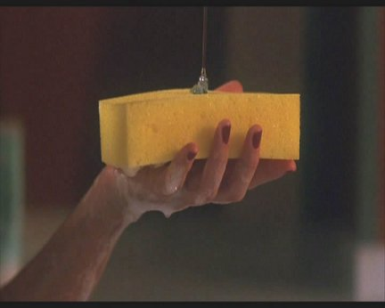 Sexy sponge